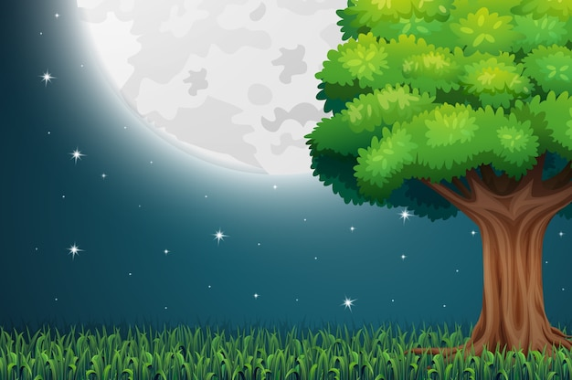 Nature scene with full moon at night