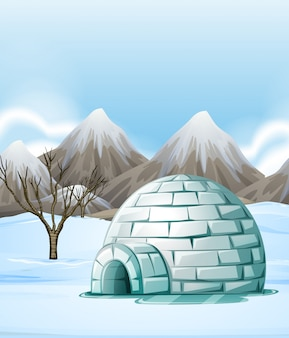 Nature scene with igloo on the ground