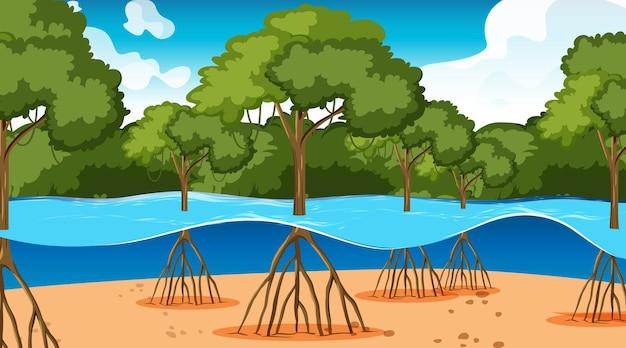 만화 스타일의 낮에는 맹그로브 숲이있는 자연 장면