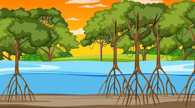 Сцена природы с мангровым лесом во время заката в мультяшном стиле