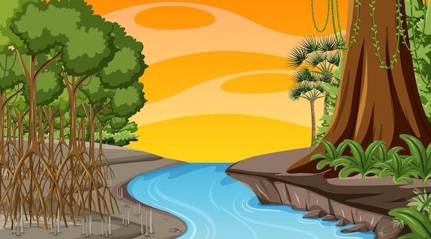 만화 스타일의 일몰 시간에 맹그로브 숲과 자연 장면