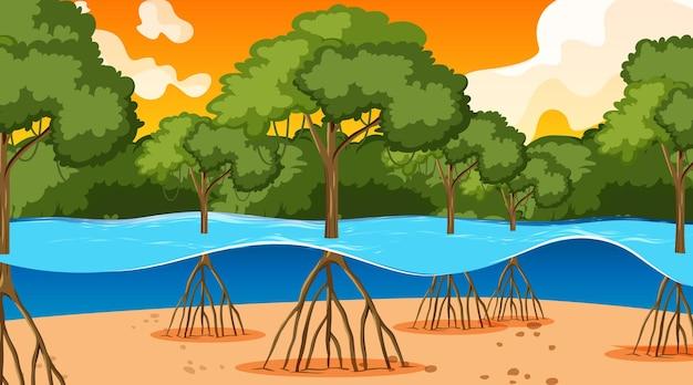 漫画風の日没時にマングローブの森と自然シーン