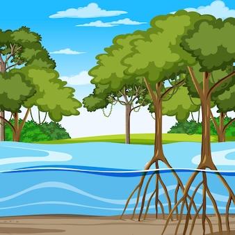 Scena della natura con foresta di mangrovie in stile cartone animato
