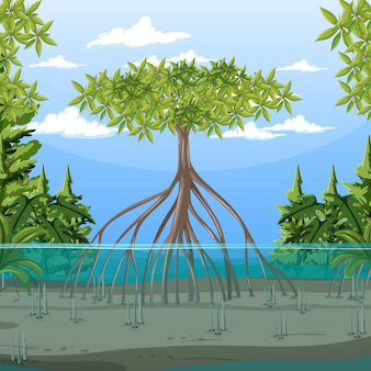 Nature scene with mangrove forest in cartoon style