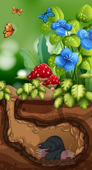 Nature scene with mole and butterfly