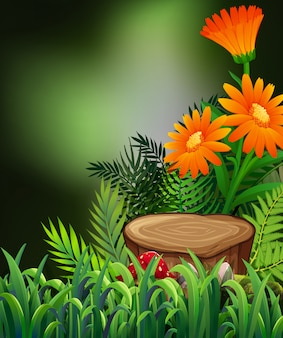 Nature scene with orange flowers and ferns