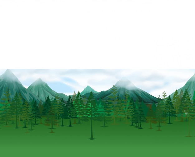 Nature scene with pine trees and mountains