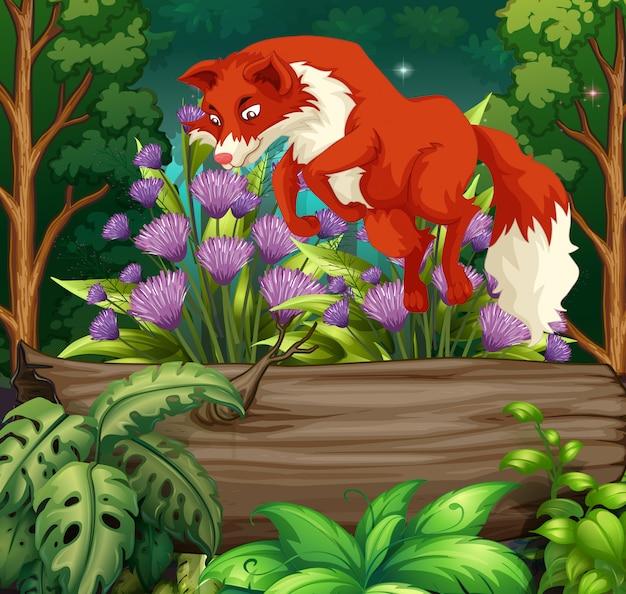 Природа сцена с рыжой лисой, перепрыгивая через бревно