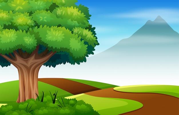 道路と緑のフィールドの自然シーン