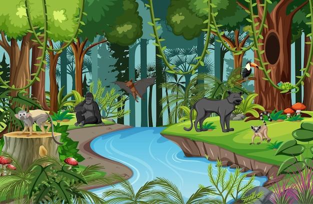 Scena della natura con ruscello che scorre attraverso la foresta con animali selvatici