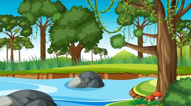숲 속을 흐르는 개울이 있는 자연 풍경