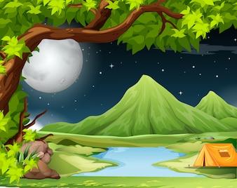 テントと自然の風景