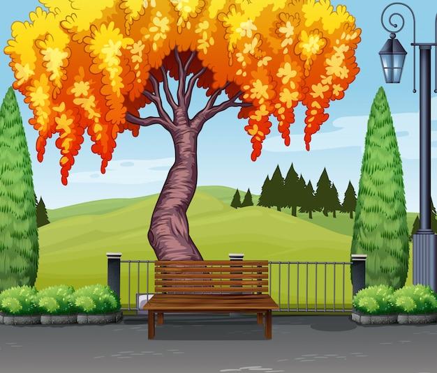 공원에서 나무와 자연 장면