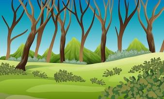 Природа сцена с деревьями и горами
