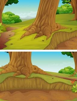 公園の木々のある自然シーン