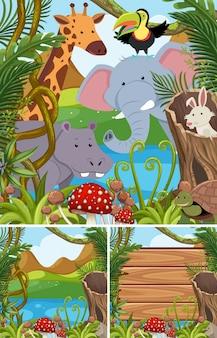숲에서 많은 동물들과 함께 자연 장면