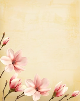 Nature spring background with beautiful magnolia branches on old paper. vector.