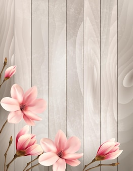 Nature spring background with beautiful magnolia branches on wooden sign.