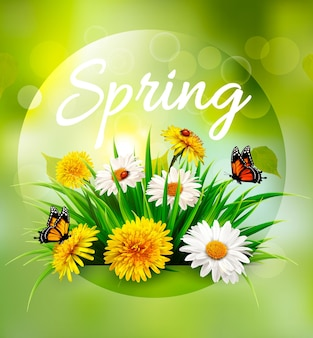 Nature spring background with grass, flowers and butterflies. vector.