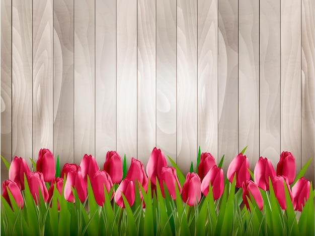 木製の看板に赤いチューリップと自然の春の背景。