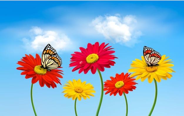 蝶のイラストと自然の春のガーベラの花