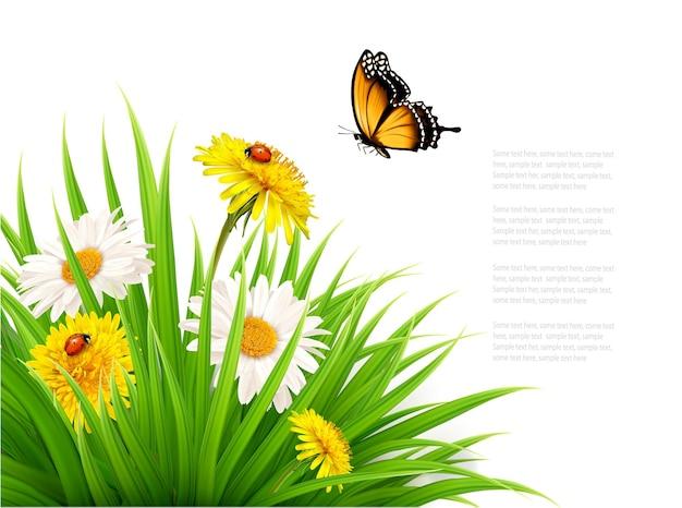 蝶とデイジーの花と自然の夏の背景。ベクトルイラスト。