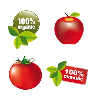 Nature tags with apple and tomato isolated. vector illusstration
