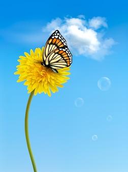 Природа с бабочкой на желтом одуванчике