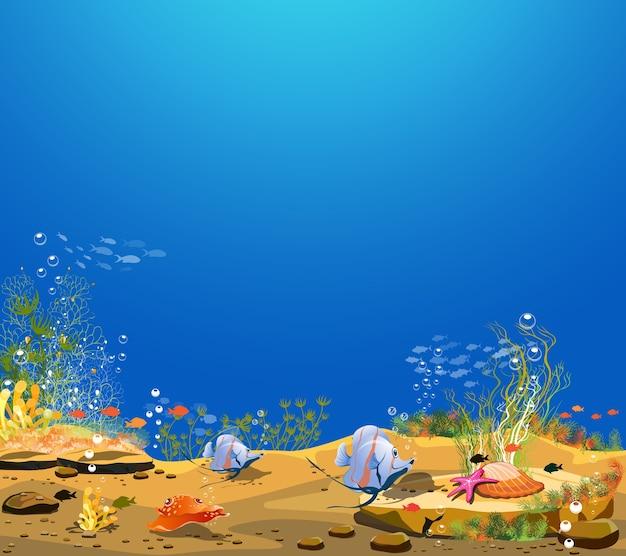 水中世界との自然