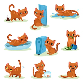 Naughty kitten in different situations, mischievous cute little cat  illustrations on a white background