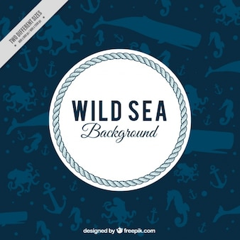 Nautical background with marine animals
