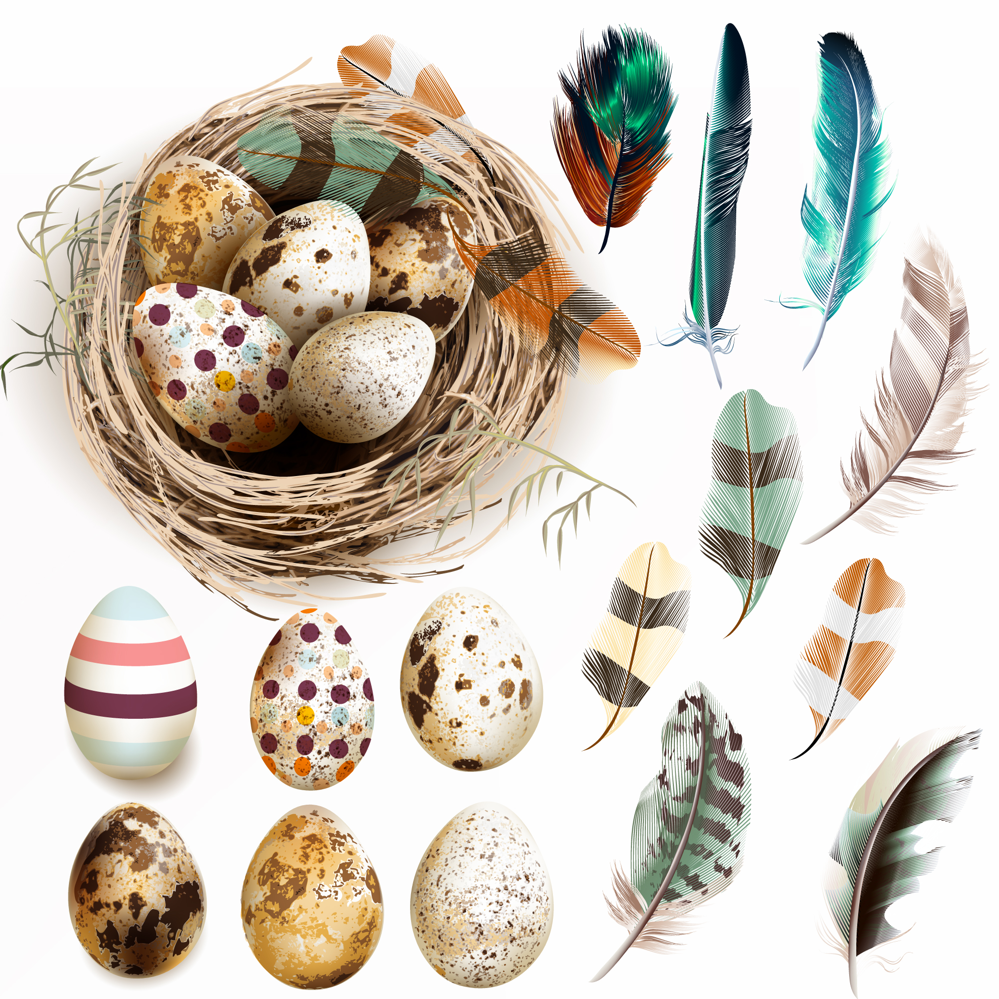 Nest with easter eggs and feathers
