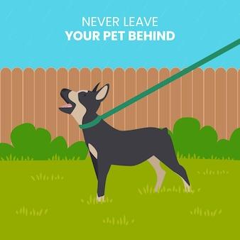 Non lasciare mai l'animale alle spalle
