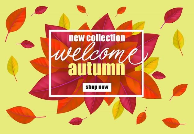 Nuova collezione di benvenuto autunno acquista ora lettering foglie di albero.