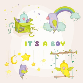 Newborn cute parrot set for baby shower or baby arrival cards in