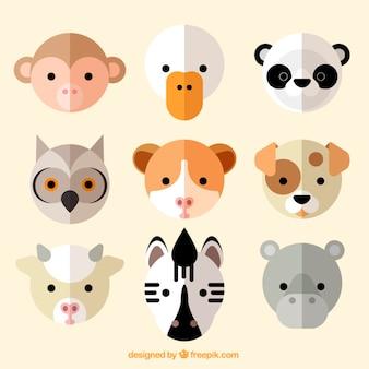 평면 디자인의 멋진 동물 아바타 모음