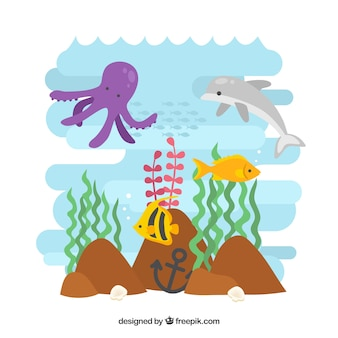 Nice animals under the sea with seaweeds