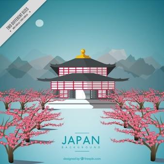 Nizza sfondo di architettura giapponese