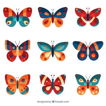 Bella collezione di farfalle colorate