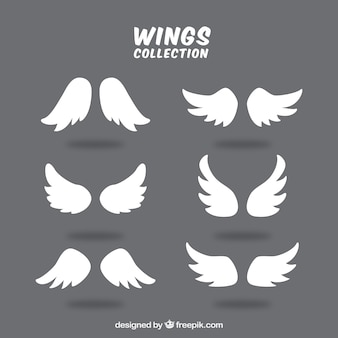Nice collection of decorative wings