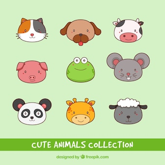 Nice faces of hand drawn animals collection
