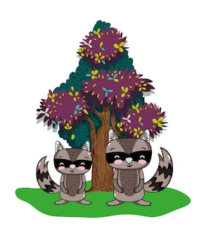 Nice raccoons friends animals and tree