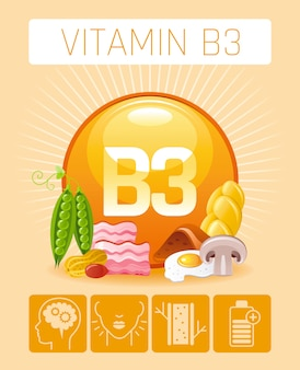 Nicotinic acid vitamin b3 rich food icons with human benefit. healthy eating flat icon set. diet infographic chart poster with bacon, peas, liver, bread.