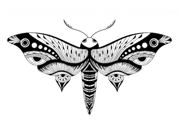 Night butterfly illustration.