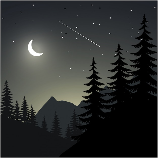 Night illustration with pine tree silhouette, mountain, moon and stars