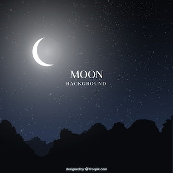 Night landscape background with moon
