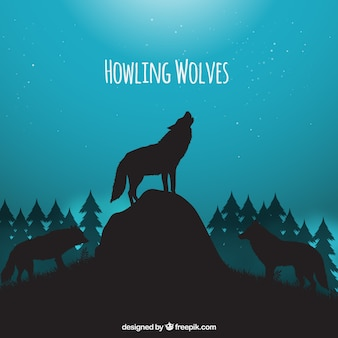 Night landscape background with wolves