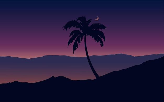 야자수와 밤 풍경