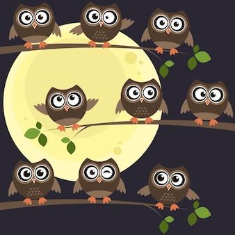 Ночные совы на ветках