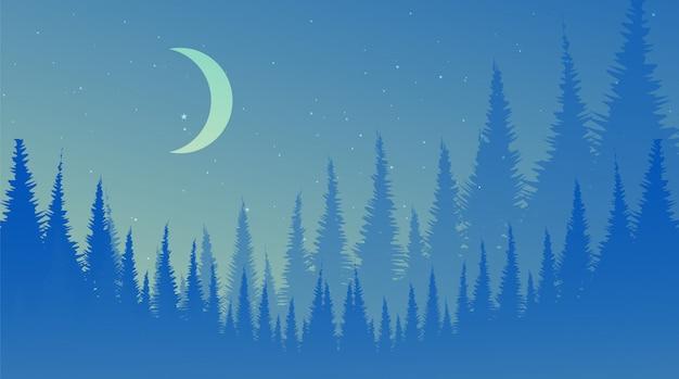 Ночной сосновый лес, пейзажный фон, туманный и туман концепции дизайна.